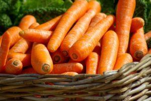carrots-673184_1920 @jaqueline macou pixabay